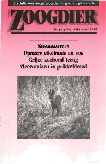 Steenmarters Opmars eikelmuis en vos Grijze zeehond terug ...