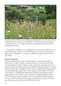 Stølslandskapet - Sabima - Page 6