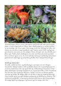 Stølslandskapet - Sabima - Page 7