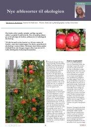 Nye æblesorter til økologien - ICROFS
