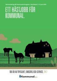 Ett hästjobb för Kommunal (pdf)