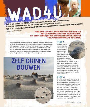 Zelf duinen bouWen - Wad4u