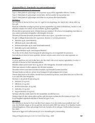 Appendiks 4: Anetavle og personskemaer - Dannebrog