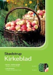 Kirkeblad 3_2009.pdf - Skødstrup Kirke