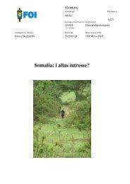 Somalia: i allas intresse? - FOI
