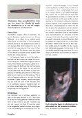 Inhoud Zoogdier 17(3) september 2006 - Nieuw in de Zoogdierwinkel - Page 7