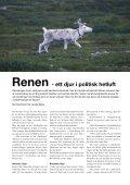 Renen - Djurskyddet Sverige - Page 4