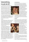 Dalälvskattens - Tupp Reklam - Page 6