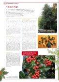 Lees hier De Erfgoedkrant nr. 3 (december 2012). - Erfgoedcel Aalst - Page 4