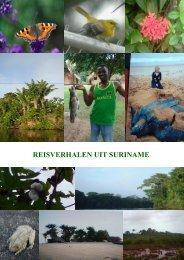 REISVERHALEN UIT SURINAME - Surimaribonet