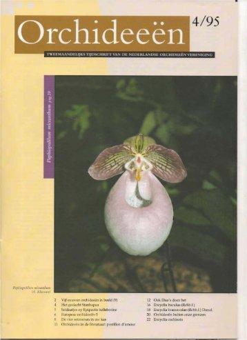 1995 - 4 - Orchideeën Vereniging Vlaanderen