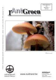 rAntGroen 20 : oktober - december 2006 - Natuurpunt Zuidrand ...