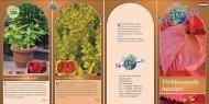 Verkleurende heesters - Van Vliet New Plants