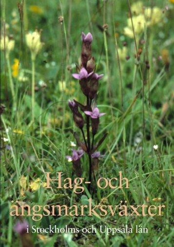 Hag- och ängsmarksväxter (374 kb, pdf) - HS Konsult