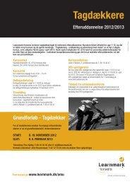 faktaark (pdf) - Learnmark Horsens
