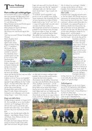 Läs artikel om Tema Vallning från 2010 - Svenska Collieklubben