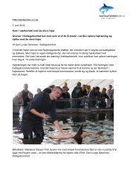 Kom i nærkontakt med de store hajer - Kattegatcentret