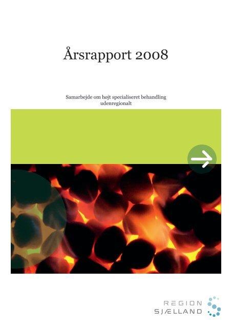 Årsrapport 2008 (pdf) - Region Sjælland