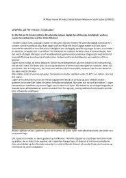 UNMISS, på FN-mission i Sydsudan