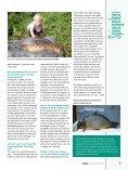 VISSEN magazine - Amsterdamse Hengelsport Vereniging - Page 5