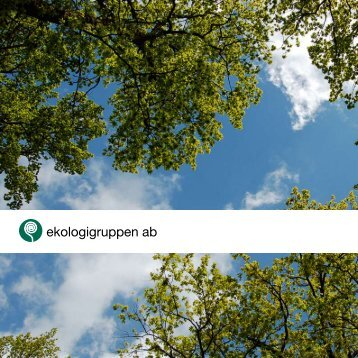 Längre version med projektexempel (PDF) - Ekologigruppen