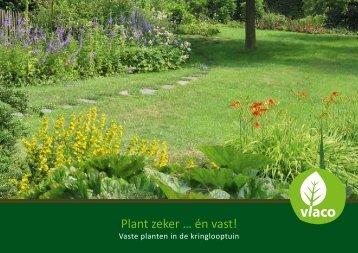 Vaste planten aanplanten - Imog