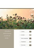 Eenjarige Bloemen - De Bolster - Page 2
