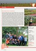 Eenjarige Bloemen - De Bolster - Page 4
