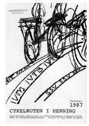 Cykelruten i Herning - Cykelviden