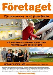 Företaget nr 3, år 2012 - Malung-Sälens kommun