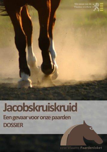 Jacobskruiskruid - Vlaams Paardenloket