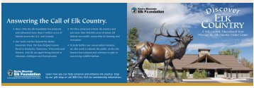 Habitat Diorama - Rocky Mountain Elk Foundation