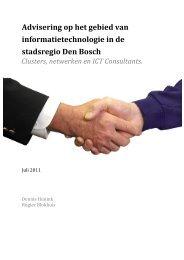 Clusters, Netwerken en ICT Consultants