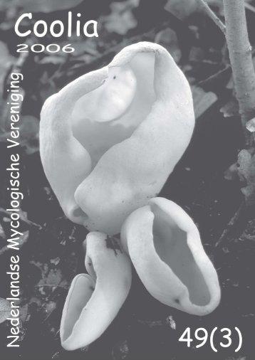 download dit nummer - Nederlandse Mycologische Vereniging