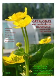 CATALOGUS BRUCKEVELD voor particulieren