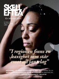 Skellefteå-tidningen nummer 1 2013 (pdf, nytt fönster)
