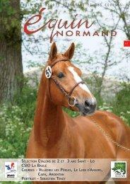 CSIO LA BAULE - Equin Normand