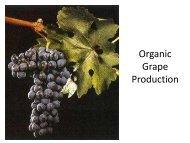 Lockwood - Slides - UT Organic Crop Production