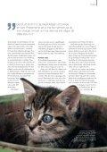 KATT - Djurskyddet Sverige - Page 5