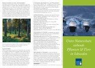 Unter Naturschutz stehende Pflanzen & Tiere in Schweden