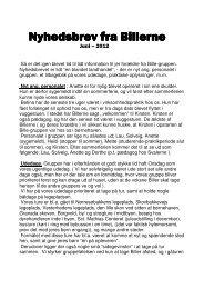 Nyhedsbrev fra Billerne juni 2012