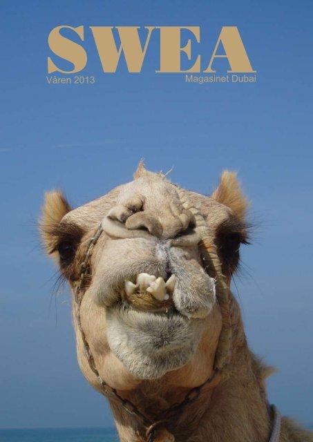 Våren 2013 Magasinet Dubai - SWEA International