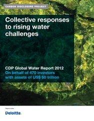 CDP-Water-Disclosure-Global-Report-2012