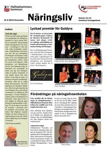 Näringsliv nr 6 november 2012 (pdf, 529 kB ... - Hallstahammar