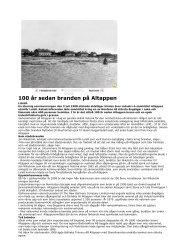 100 år sedan branden på Altappen.pdf