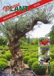 MAGAZINE - Veluwe Plant