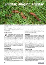 Mordarsniglar_ from_Odlaren_2008-2.pdf - Fobo