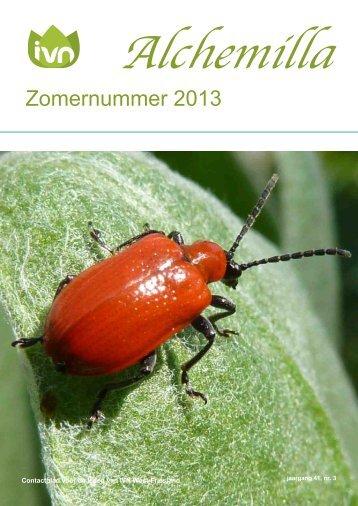 Zomer 2013 - West-Friesland