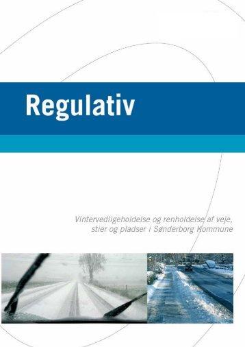 Regulativ for vintervedligeholdelse og renholdelse 01-02-2013