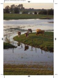 Waterwolven_opm07:Rooijendijk 4-5-09 11:23 ... - Uitgeverij Atlas